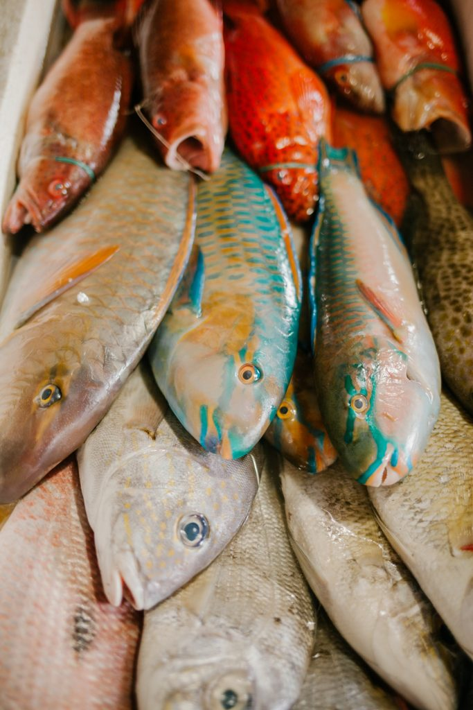 Places_to_Buy_Seafood_in_Marathon_Paradise_Cuban_Restaurant
