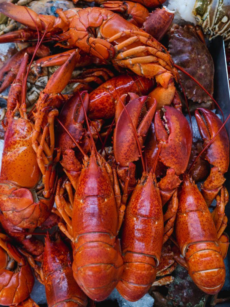 Buy_Lobster_Tails_Online_in_Marathon_serving_lobster